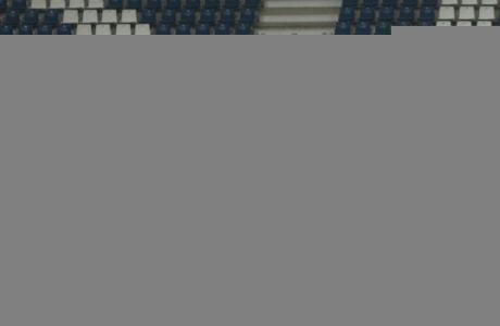 Лига Чемпионов УЕФА, открытая тренировка «Зенита» перед матчем с «Гентом»